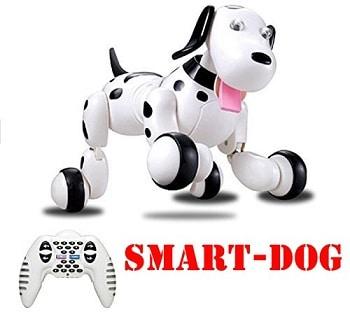 כלבלב צעצוע רובוטי